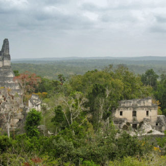 Panoramic view over the Tikal ruins and jungle in Guatemala