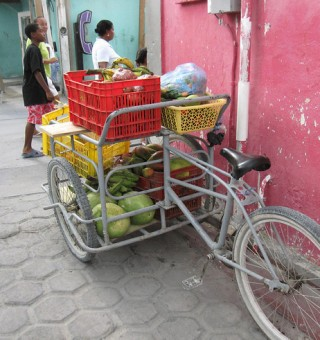 belize fruit vendor bicycle