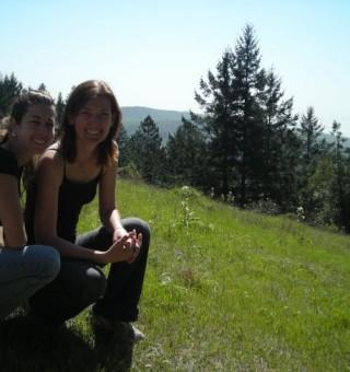 top of muir woods national park