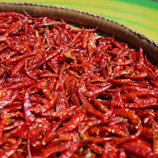 Thai chili peppers drying in sun