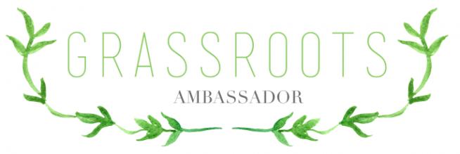 GV Ambassador