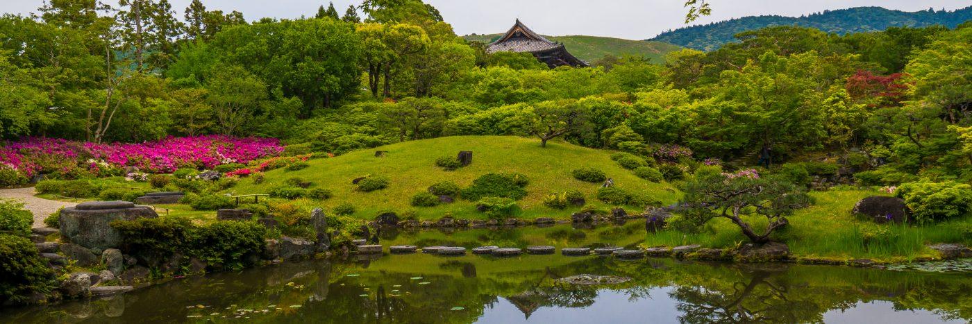 traveling to Nara, Japan